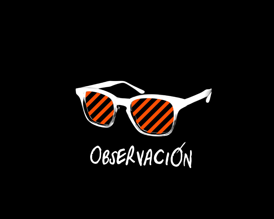 observacion_960x768_b